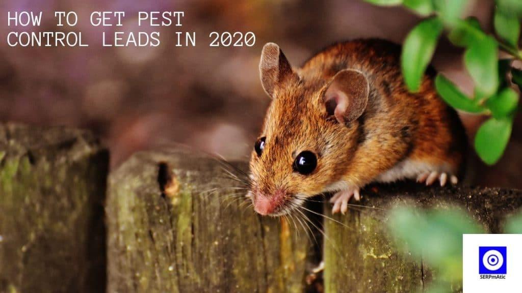 Pest Control Leads
